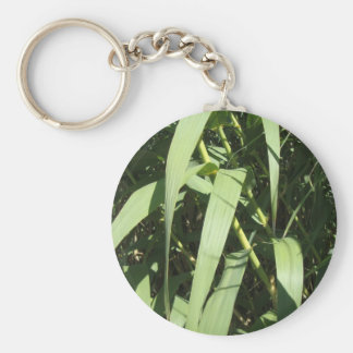 Bamboo Leaves Keychain