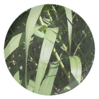 Bamboo Leaves Dinner Plate