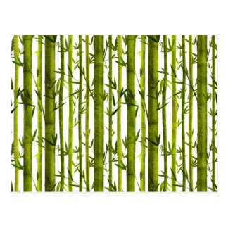 Bamboo Lessons Postcard