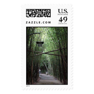 Bamboo Path Postage Stamp