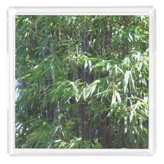 Bamboo Photo Acrylic Tray