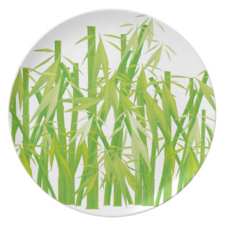 Bamboo Party Plates