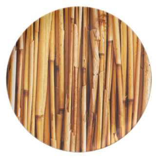 Bamboo Party Plate