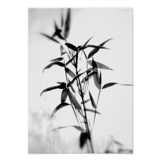 Bamboo Sillouette Poster
