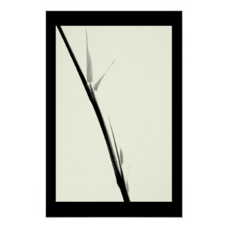 Bamboo Sillouette Posters