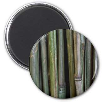 Bamboo Stalks 2 Inch Round Magnet