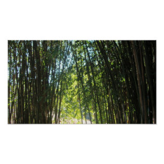 Bamboo thicket poster