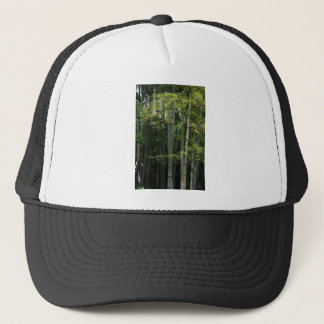 Bamboo Thicket. Trucker Hat