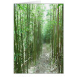 Bamboo Trail Greeting Cards