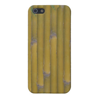 Bamboo Wall iPhone SE/5/5s Case