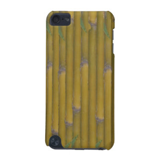 Bamboo Wall iPod Touch 5G Cover