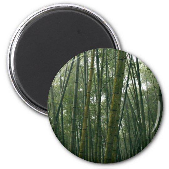 Bamboos Magnet