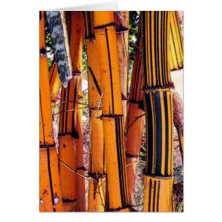 bambou2 tarjeta de felicitación