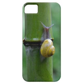Bambú caracol Bamboo Slug macro iPhone 5 Carcasa