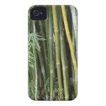 Bambú Case-Mate iPhone 4 Cárcasas