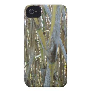Bambú Case-Mate iPhone 4 Funda