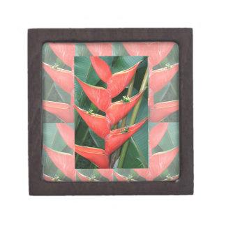 Bambú de Heliconia de las flores del regalo del Caja De Joyas De Calidad