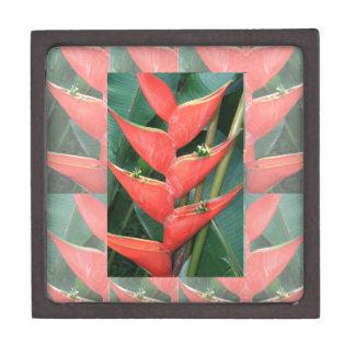 Bambú de Heliconia de las flores del regalo del Caja De Regalo De Calidad