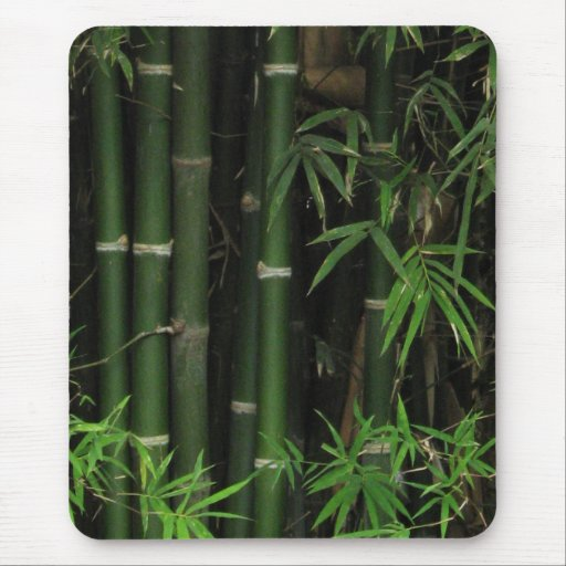 Bambú… FAO Rai, Nong Khai, Isaan, Tailandia Alfombrilla De Ratón