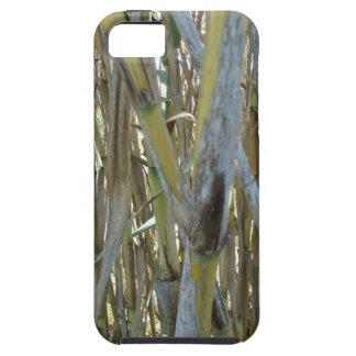 Bambú Funda Para iPhone 5 Tough