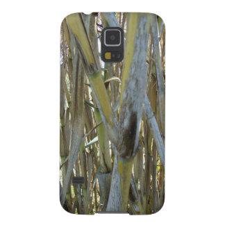 Bambú Fundas Para Galaxy S5