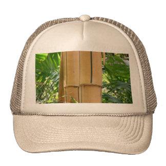 Bambú Gorros Bordados