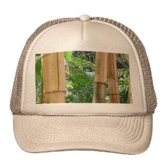 Bambú Gorros