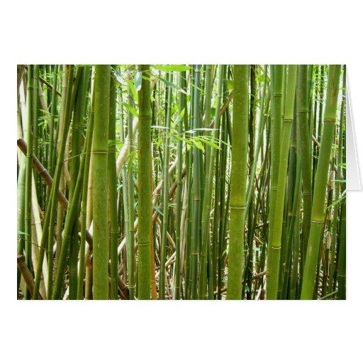 Bambú hawaiano tarjeta de felicitación