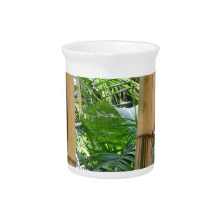 Bambú Jarras Para Bebida