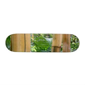 Bambú Tabla De Skate
