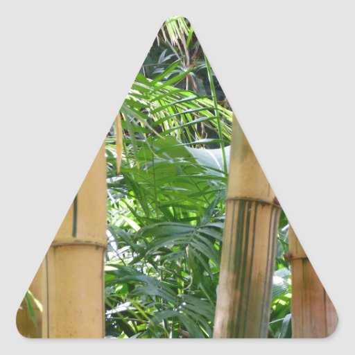 Bambú Pegatina Triangulo Personalizadas