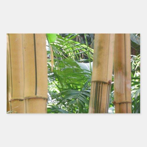 Bambú Rectangular Pegatina