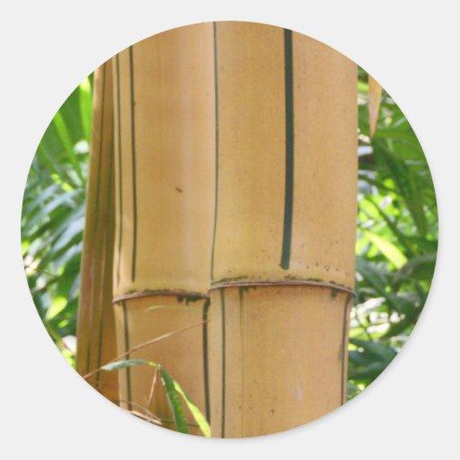 Bambú Pegatina Redonda