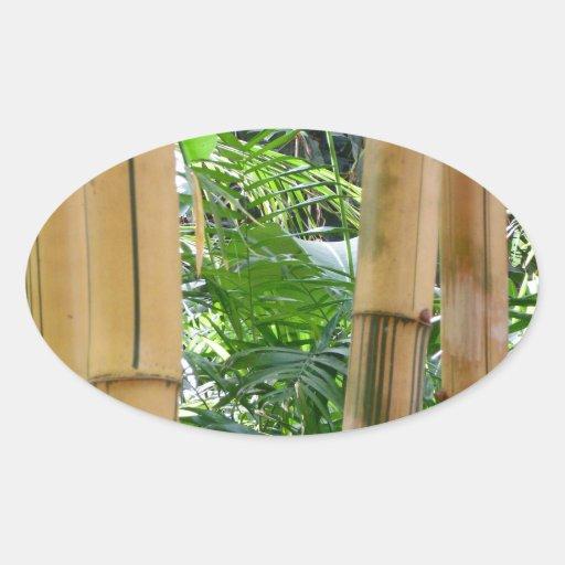 Bambú Calcomanía De Óval Personalizadas