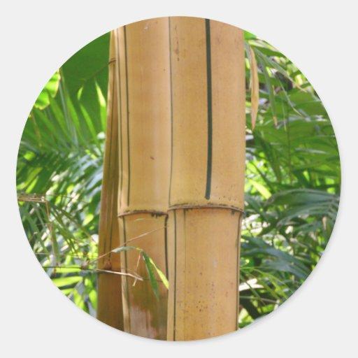 Bambú Pegatinas Redondas