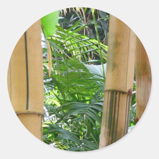 Bambú Etiqueta Redonda