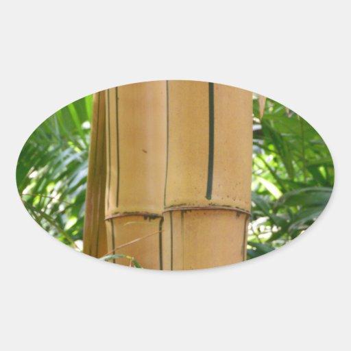 Bambú Calcomanías Óvales Personalizadas