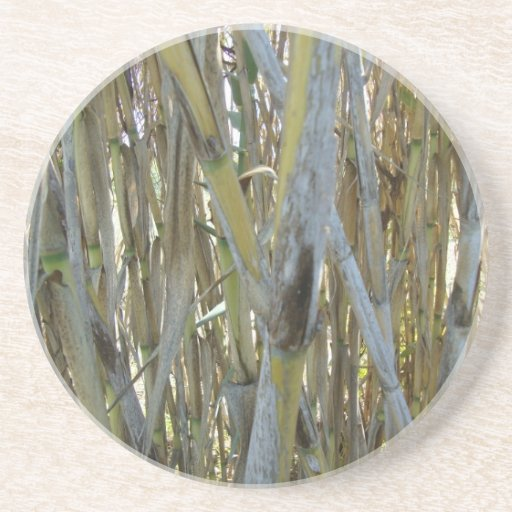 Bambú Posavasos Para Bebidas