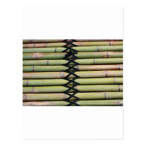 Bambú Postales