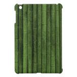 Bambú verde: