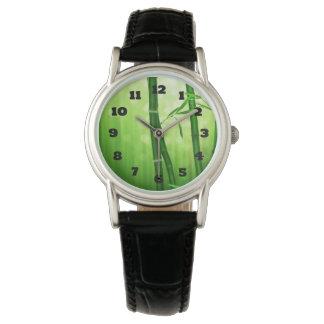Bambú verde exótico con las luces brillantes de relojes