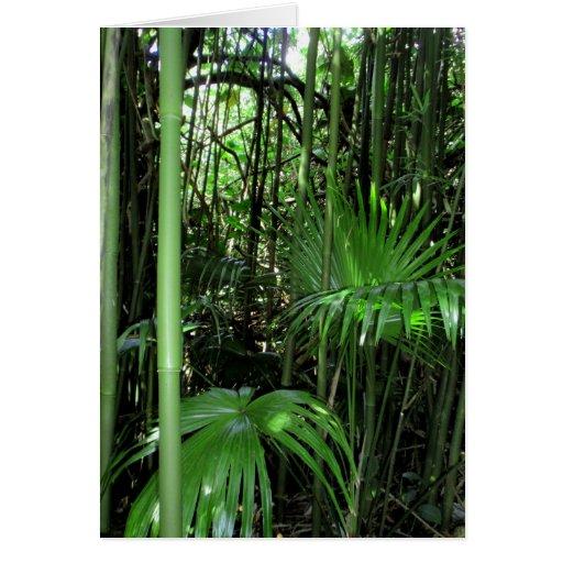 Bambú y palmas hawaianos tarjeta de felicitación