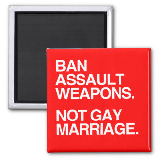 BAN ASSAULT WEAPONS NOT GAY MARRIAGE - png Magnets