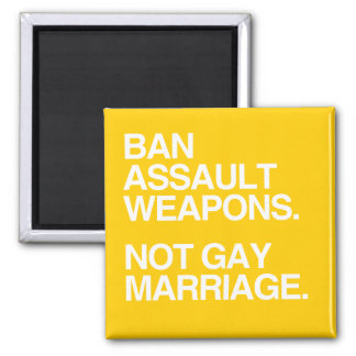 BAN ASSAULT WEAPONS NOT GAY MARRIAGE - png Magnet