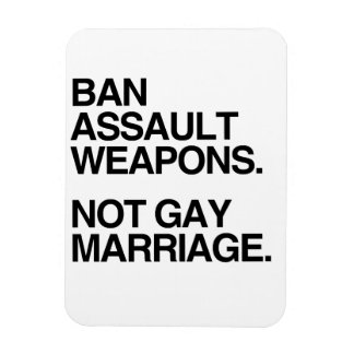 BAN ASSAULT WEAPONS NOT GAY MARRIAGE - png Vinyl Magnets