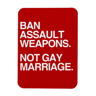 BAN ASSAULT WEAPONS NOT GAY MARRIAGE - png Flexible Magnet