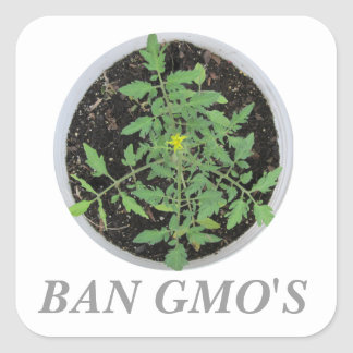 Ban GMO's Heirloom Tomato Plant Peace Sign Sticker