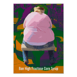 Ban High Fructose Corn Syrup Poster