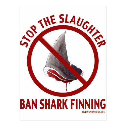 shark finnings should be banned Taiwan banned shark finning in 2011 malaysia malaysia was one of the top 10 importers and exporters of shark fins in the world between 2000 and 2009 the country.