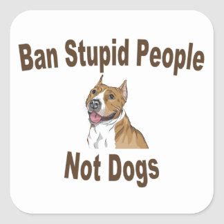 Ban Stupid People Square Sticker